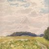 Clouds. Blooming meadow, 2007 42.5x32 cm; картина не продается