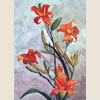 Flame-coloured lilies, 2001